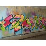 Eliminador de pintadas. Graffiti kem (Aerosol de 650 cc). Desde 16,50€