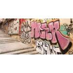 Protector antigraffiti permanente. Graffistop Cristal (Envase de litro).